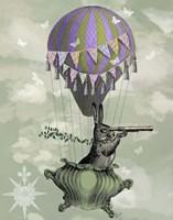 Navigating Rabbit Fine-Art Print