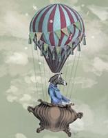 Flying Zebra Fine-Art Print