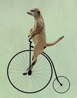 Meerkat on Black Penny Farthing Fine-Art Print