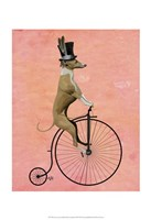 Greyhound on Black Penny Farthing Fine-Art Print