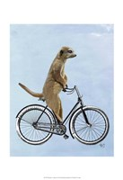 Meerkat on Bicycle Fine-Art Print