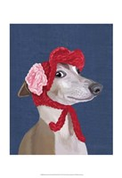 Greyhound with Red Woolly Hat Fine-Art Print
