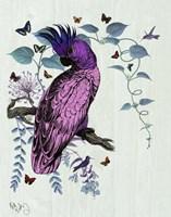Pink Parrot Fine-Art Print