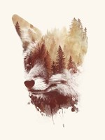 Blind Fox Fine-Art Print
