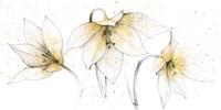 Gilded Graphite Floral Trio Fine-Art Print