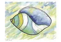 Underwater Shell 2 Fine-Art Print