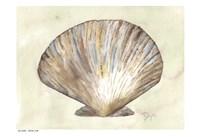Sea Shells Neutral 2 Fine-Art Print