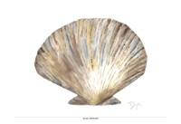 Sea Shell Neutral 2 Fine-Art Print