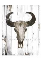 Bull Skull Brown Fine-Art Print