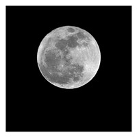 Moonlight 2 Fine-Art Print