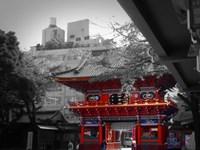 Temple In Tokyo Fine-Art Print