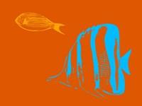 Aquarium 2 Fine-Art Print
