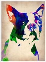 Boston Terrier Watercolor Fine-Art Print