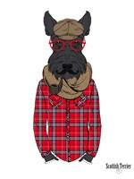 Scottish Terrier In Pin Plaid Shirt Fine-Art Print