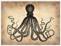 Vintage Octopus Fine-Art Print