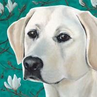 Dlynn's Dogs - Magnolia Fine-Art Print