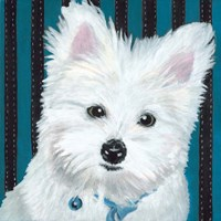 Dlynn's Dogs - Paris Fine-Art Print