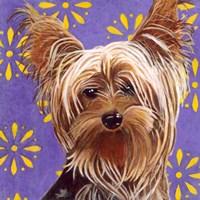 Dlynn's Dogs - Ringo Fine-Art Print