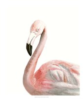 Watercolor Flamingo Fine-Art Print