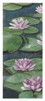 Tranquil Lilies I Fine-Art Print