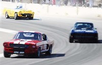 Mustang and Corvette Racing Fine-Art Print