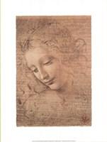 Testa di Faniciulla Detta Fine-Art Print