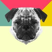 Party Pug Fine-Art Print