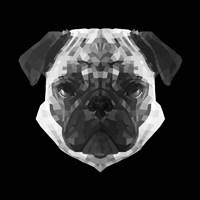 Pug Head Fine-Art Print