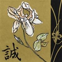 Asian Iris Fine-Art Print