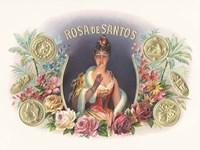 Rosa De Santos Fine-Art Print