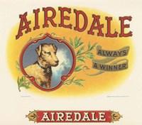 Airedale Fine-Art Print