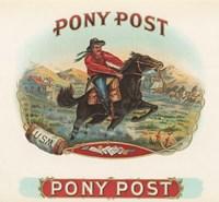 Pony Post Fine-Art Print
