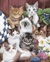 Cuddly Kittens Fine-Art Print