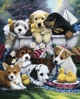 Bath Time Pups Fine-Art Print