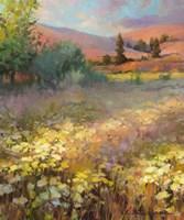 Field Of Dreams Fine-Art Print