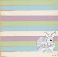 Rabbit Grey Fine-Art Print