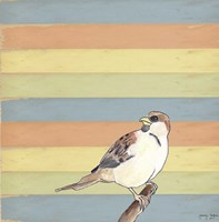 Little Brown Bird Fine-Art Print