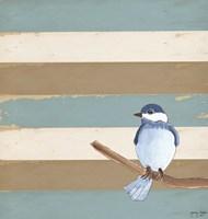 Dark Bluebird Fine-Art Print
