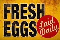 Fresh Eggs Fine-Art Print