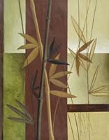 Bamboo Study II Fine-Art Print