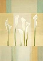 Calla Lily Dance I Fine-Art Print