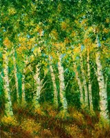 Birch Trees Fine-Art Print