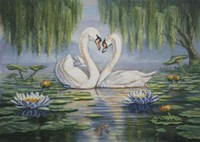 Swan Love Fine-Art Print
