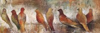 Birds On A Wire Fine-Art Print