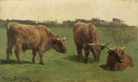 Three Studies of Reddish-Haired Cows on a Meadow Fine-Art Print