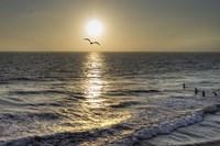 Ocean View Fine-Art Print