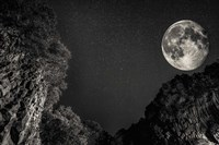 Full Moon Fine-Art Print