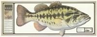 World Record Largemouth Bass Fine-Art Print