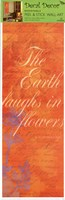 Sorbet Script - Earth Laughs Wall Decal