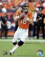 Peyton Manning 2015 Action Fine-Art Print